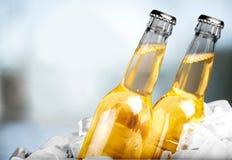 вектор померанца иллюстрации бутылки пива предпосылки Стоковое Изображение RF