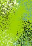 вектор предпосылки зеленый Стоковая Фотография
