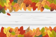 Вектор предпосылки осени с листьями падения и белой деревянной предпосылкой Включая черный космос для текста иллюстрация вектора
