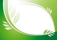 вектор предпосылки флористический зеленый бесплатная иллюстрация