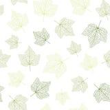 вектор предпосылки безшовный Листья зеленого цвета с венами бесплатная иллюстрация