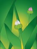 вектор предпосылки флористический Стоковые Изображения RF
