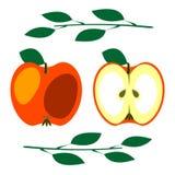 Вектор приносить иллюстрация Детальный значок красного яблока при листья, весь и половинный, изолированные над белой предпосылкой Стоковые Изображения RF