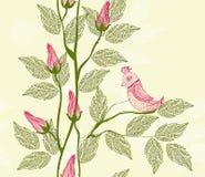 вектор птицы предпосылки флористический безшовный бесплатная иллюстрация