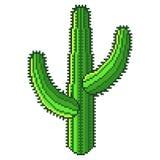 Вектор пустыни пиксела зеленым детализированный кактусом изолированный Бесплатная Иллюстрация