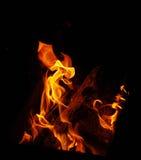 вектор пламени пожара предпосылки черный Стоковое Фото
