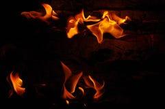 вектор пламени пожара предпосылки черный Стоковые Фотографии RF