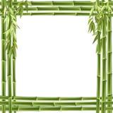 вектор рамки предпосылки bamboo Стоковая Фотография RF