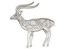 Вектор расцветки антилопы для взрослых бесплатная иллюстрация