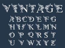 Вектор ретро шрифта и алфавита Стоковое фото RF