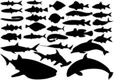 вектор рыб установленный Стоковые Изображения RF
