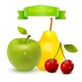 Вектор свежих фруктов Стоковые Фото