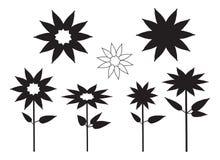 вектор силуэта завода цветка Стоковая Фотография RF