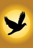 вектор силуэта птицы Стоковые Фото