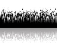 вектор силуэта травы иллюстрация вектора