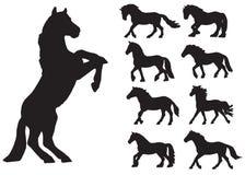 вектор 8 силуэтов eps установленный лошадями Стоковые Изображения RF