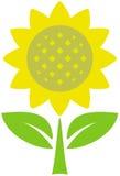 вектор солнцецвета иллюстрации Стоковая Фотография RF
