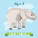 Вектор слона, животные леса Стоковые Фото