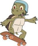 Вектор талисмана черепахи конькобежца Стоковое Изображение RF