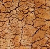 Вектор текстуры почвы Стоковые Изображения RF