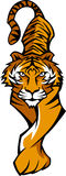 вектор тигра талисмана логоса Стоковая Фотография