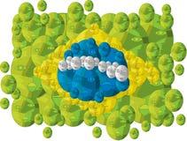 вектор типа имеющегося флага Бразилии стеклянный Стоковое Фото