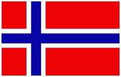 вектор типа Норвегии имеющегося флага стеклянный Стоковые Изображения