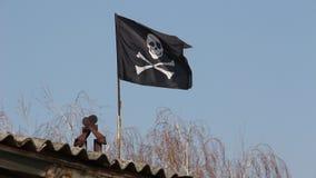 вектор типа пирата имеющегося флага стеклянный видеоматериал