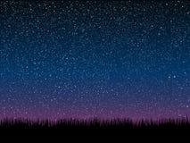 вектор Трава силуэта небо звёздное 10 eps Стоковая Фотография RF