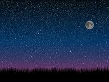 вектор Трава силуэта небо звёздное 10 eps Стоковая Фотография