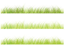 вектор травы