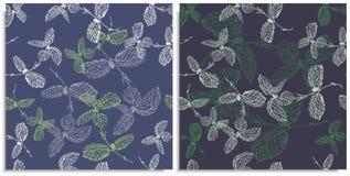 Вектор установил безшовной картины с sprigs мяты Нарисованный вручную на листе на графическом стиле Только линии, составной путь, стоковые изображения rf