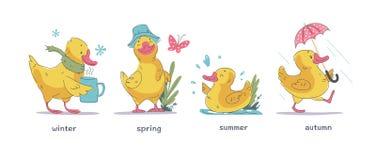 Вектор установил милого маленького желтого характера утки младенца идя, плавающ, усмехаться изолированный на белой предпосылке в  иллюстрация штока