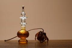 вектор дух сетки иллюстрации чертежа бутылки Стоковые Фотографии RF