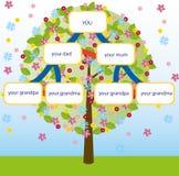вектор фамильного дерев дерева Стоковое Фото