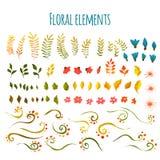 вектор флористического цветка элемента одиночный вектор иллюстрации травы цветков вычерченная рука Стоковое Изображение RF