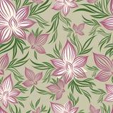 вектор флористической цветка картины lilly безшовный бесплатная иллюстрация