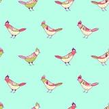 вектор флористической картины безшовный Красивые птицы цвета в стиле людей Стоковая Фотография RF