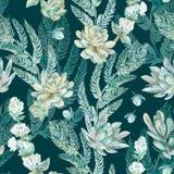 вектор флористической картины безшовный Succulents, папоротники, тернии Стоковое Изображение RF