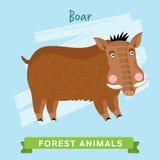 Вектор хряка, животные леса Стоковая Фотография
