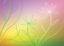 вектор цветка Стоковое фото RF