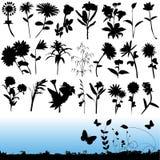 вектор цветка Стоковые Изображения RF