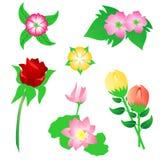 вектор цветка Стоковые Фото