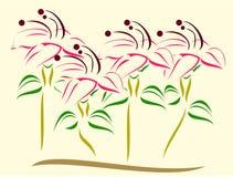 Вектор цветков Стоковая Фотография
