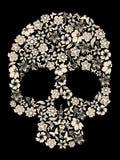 вектор черепа цветка Стоковые Фото
