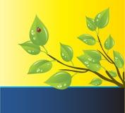 вектор шаблона охраны окружающей среды Стоковые Изображения