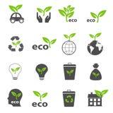 Вектор экологичности и природы зелеными установленный значками Стоковые Фото
