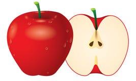 Вектор Apple Стоковая Фотография RF