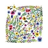 вектор eps карточки флористический включенный Красочное флористическое знамя с Стоковые Изображения RF
