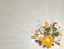 вектор hibiscus букета Стоковые Фото